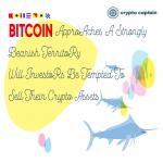 Bitcoin Approaches Euphoric territory